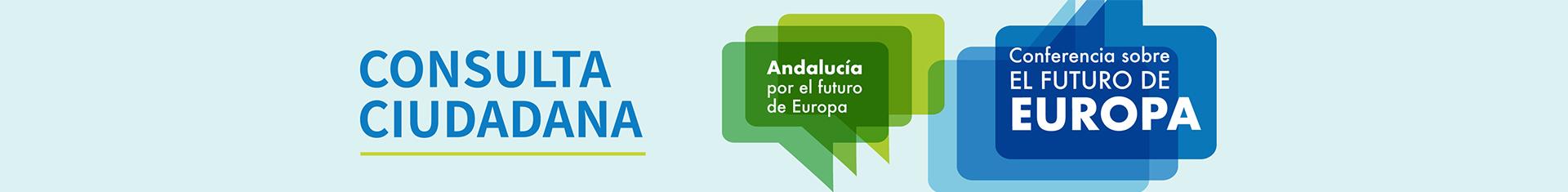 Imagen Consulta ciudadana